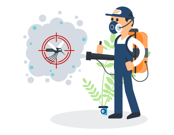 Quality Pest Extermination Services in Scarborough